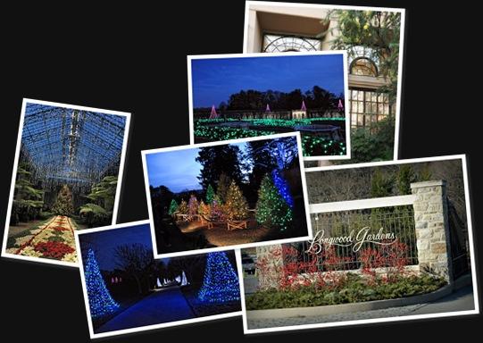 View Longwood Gardens 12-12-19